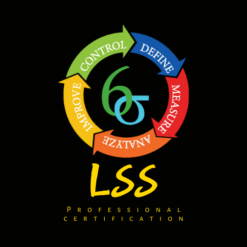 Professional​ Certification Lean Sigma